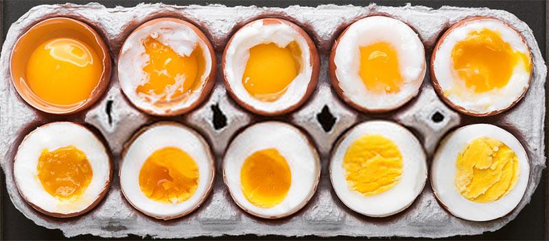 type-of-eggs